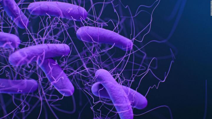 شناسایی ابرمیکروب ها با استفاده از هوش مصنوعی