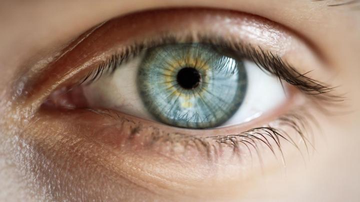 فناوری که بینایی را به نابینایان باز می گرداند